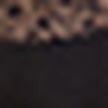 Sujetador clásico negro con foam Daily Glam Trendy Sexy, , DIM