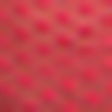 Culotte de tul plumetis rosa chicle Dotty Mesh, , DIM