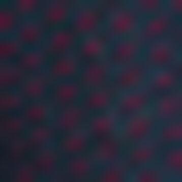 Pack de 2 pares de calcetines para mujer azul y burdeos plumetis, , DIM