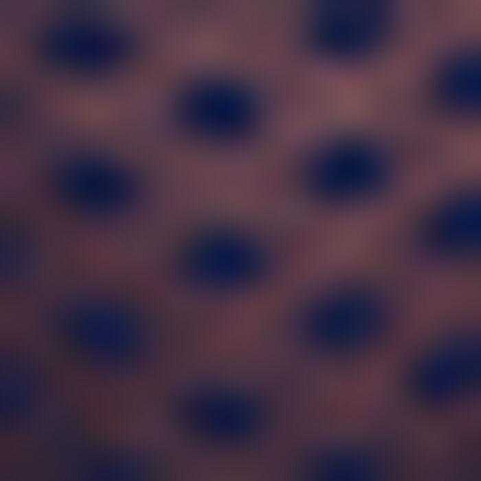 Tanga de tul con plumetis azul Dotty Mesh, , DIM