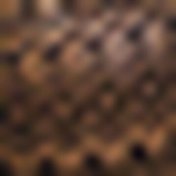 Sujetador clásico bustier negro de encaje Mod de Dim, , DIM