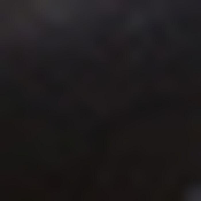 Sujetador triangular con foam negro de encaje Mod de Dim, , DIM
