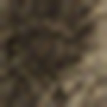 Calcetines de lurex dorados Style, , DIM