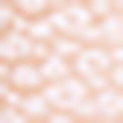 Braguita de talle alto Skin Rose de encaje Leopard Line, , DIM