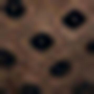 Sujetador triangular sin aros negro de encaje plumetis Dotty Line, , DIM