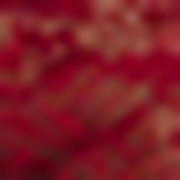 Sujetador de gran capacidad de encaje rojo cherry Generous Essentiel , , DIM
