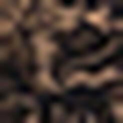 Braguita negra de mujer de microfibra y encaje Generous Essentiel , , DIM